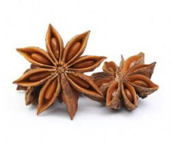 anise-essential-oil6